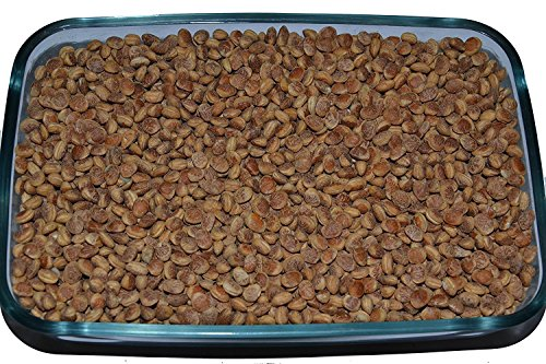 Leeve Dry Fruits Almondette Kernels Charoli Chironji - 200 Gms by Leeve Dry Fruits (Image #1)