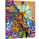"""Howie Green Premium Thick-Wrap Canvas Wall Art Print entitled Jimi Colo 20""""x24"""""""