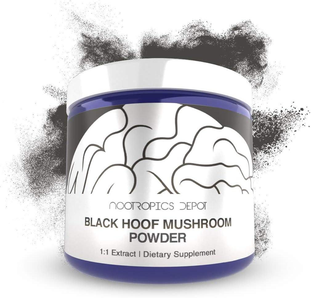 Black Hoof Mushroom Powder 60 Grams Phellinus linteus Organic Whole Fruiting Body Extract Supports Immune Health Promotes Healthy Cellular Function