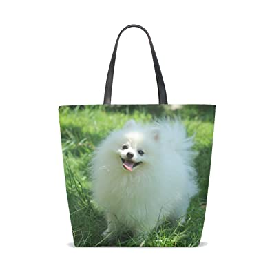 Amazon.com  Animal Dog Pomeranian Small Fluffy Puppy Adorable Cute Pet Tote  Bag Purse Handbag For Women Girls  Shoes 081a373fbb