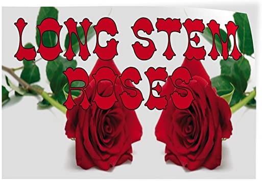 Decal Sticker Multiple Sizes Florist #1 Style C Business Florist Outdoor Store Sign White 27inx18in Set of 5