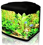 Interpet Fish Pod Glass Aquarium Fish Tank 48 Litre including CF1 Cartridge Filter