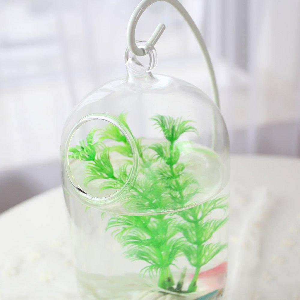 Amazon.com: Cocas Behokic Clear Height Hanging Glass Aquarium Fish Bowl Tank Flower Vase Plant Vase Home Decoration 23cm Height White Rack Holder - (Color, ...