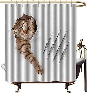 Godves - Cortinas para mampara de Ducha, diseño de Gato en Papel Pintado, con Pinza, para arañar, diseño de Gato, 55 x 84 L, Color marrón y Blanco: Amazon.es: Hogar