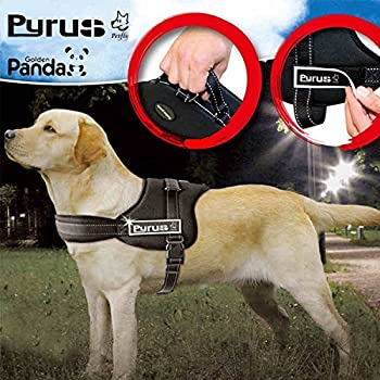 Dog Harness, PYRUS K8 No Pull Harness Dog Leash Padded Pet Walking Harness Heavy Duty for Dogs ( L )