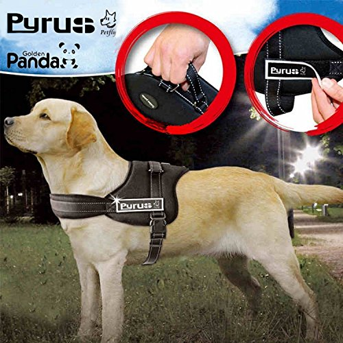 Heavy Duty Harness (Dog Harness, PYRUS K8 No Pull Harness Dog Leash Padded Pet Walking Harness Heavy Duty for Dogs ( M ))