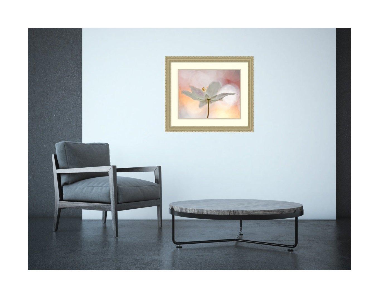 Amanti Art A Sip Bee Thalin Framed Art Print 27 x 23