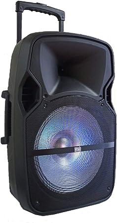 Caja amplificada portátil Bluetooth Activo Trolley 600 W 12 Pulgadas baterías + USB/SD Recargable Karaoke función Recording: Amazon.es: Electrónica