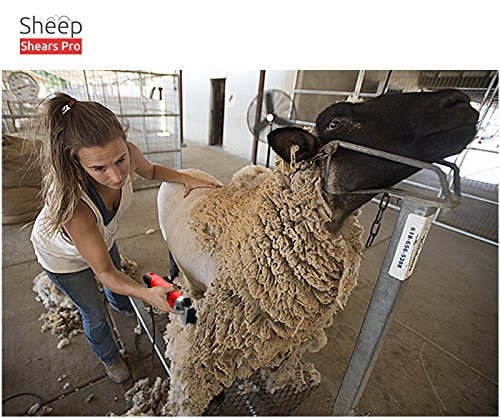 Sheep Shears Pro 110V 500W Professional Heavy Duty Electric Shearing Clippers with 6 Speed, for Shaving Fur Wool in Sheep, Goats, Cattle, and Other Farm Livestock Pet, with Grooming Carrying Case CE by Sheep Shears Pro (Image #4)