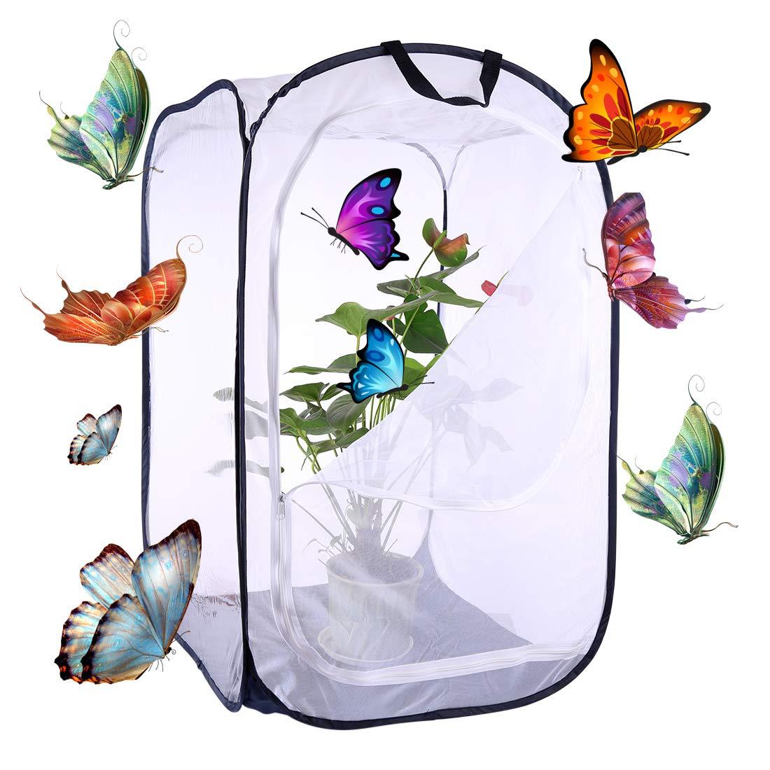 Forweilai Gabbia a farfalla Habitat Cage Mesh Terrarium per insetti - size piccolo (Nero)