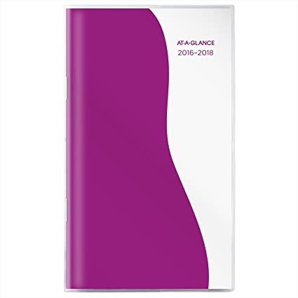 amazon com at a glance academic year monthly pocket planner july