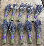 Findlavender - Culinary Lavender Bundles - 11 - 14'' Long - Can Be Used for Any Ocassion - Perfect for your wedding! - 10 Bundles