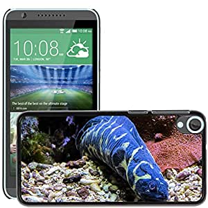 Hot Style Cell Phone PC Hard Case Cover // M00130664 Eel Sea Animal Blue Deep Sea // HTC Desire 820