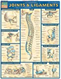 Joints and Ligaments: Reference Guides (Quickstudy: Academic)