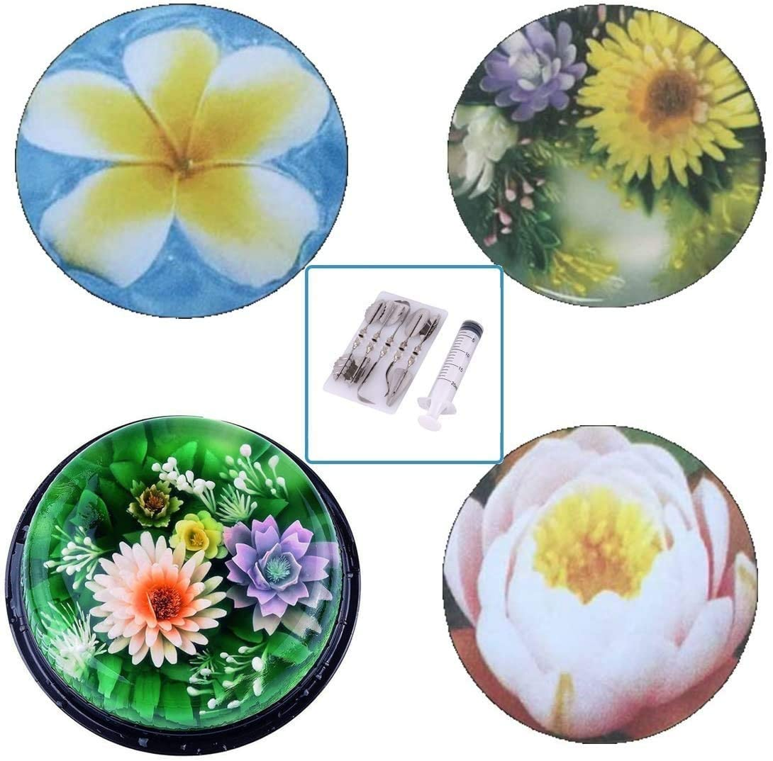 Stainless Steel Gelatin Jelly Art Tools 3D Flower Cake Decorating Tool Set of 20 Piece DIY Needle Tips Pastry Tools H 11pcs//set