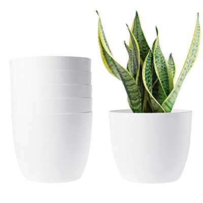 T4U 6 Inch Self Watering Planters Plastic Plant Pot, Modern Decorative Flower Pot/Window Box for All House Plants, Flowers, Herbs, African Violets, Succulents - White, Set of 6: Garden & Outdoor