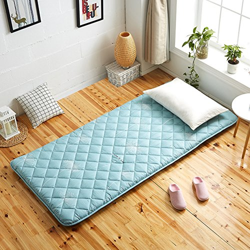 hxxxy Tatami floor mat,Dorm Mattress [japanese-style] Cotton-B 90x190cm(35x75inch) by hxxxy