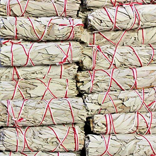Morocca Wholesale Bulk White Sage Smudge Stick Choose: 1 3 5 10 20 25 50 Cleansing (Smudge Wholesale Sticks)