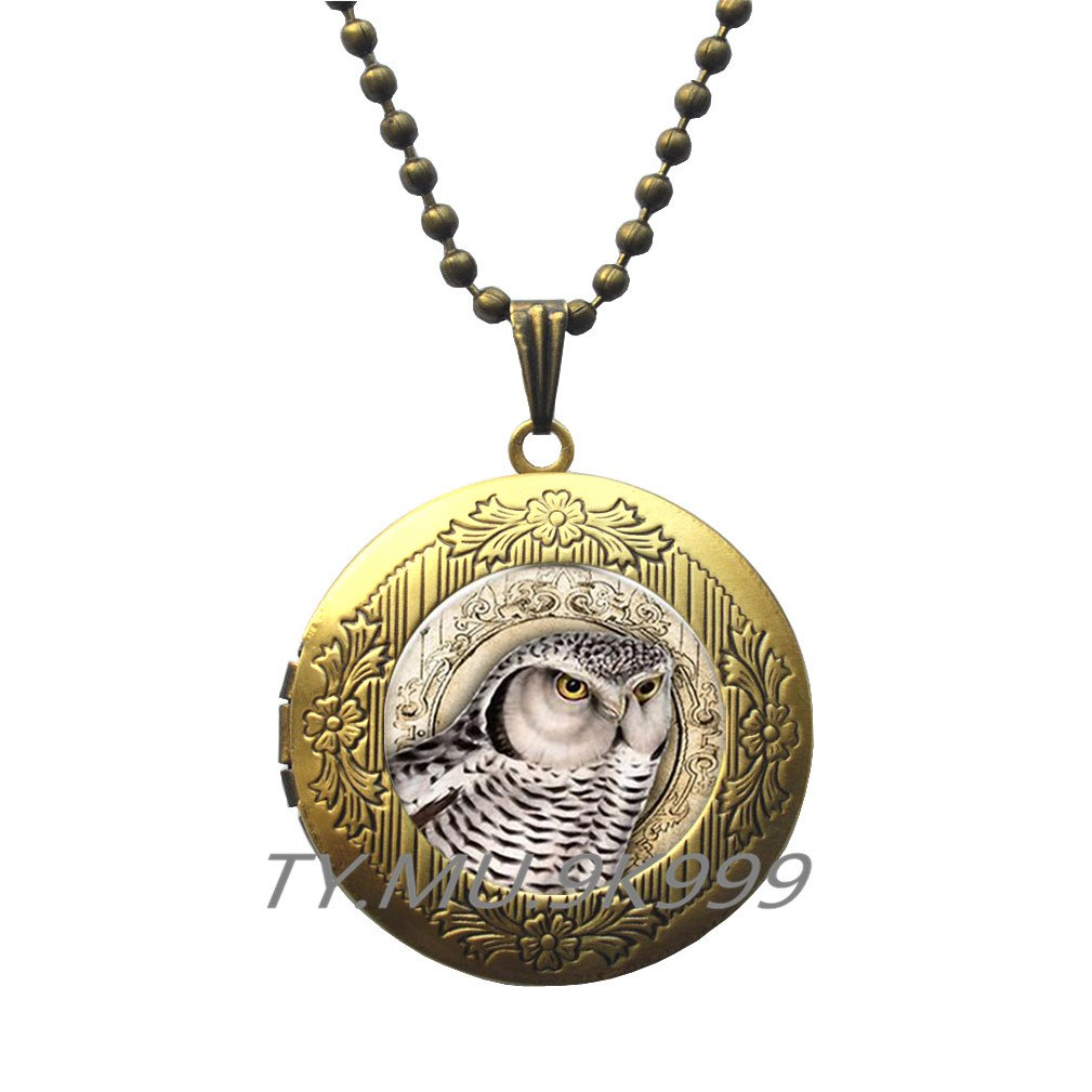 Bird Locket Necklace Bird Lover Gift Owl Jewelry Bird Jewelry Bird Of Prey.Y198 Owl Locket Pendant Yao0dianxku Owl Locket Necklace