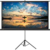 Amazon Price History for:Projector Screen with Stand, TaoTronics Indoor and Outdoor Movie Screen 100 Inch Diagonal 16:9 with Premium Wrinkle-Free Design (Easy to Clean, 1.1 Gain, 160° Viewing Angle and Includes a Carry Bag)