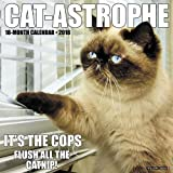 2018 Cat-Astrophe Wall Calendar Cats {jg} Great Holiday Gift Ideas - for mom, dad, sister, brother, grandparents, gay, lgbtq, grandchildren, grandma.