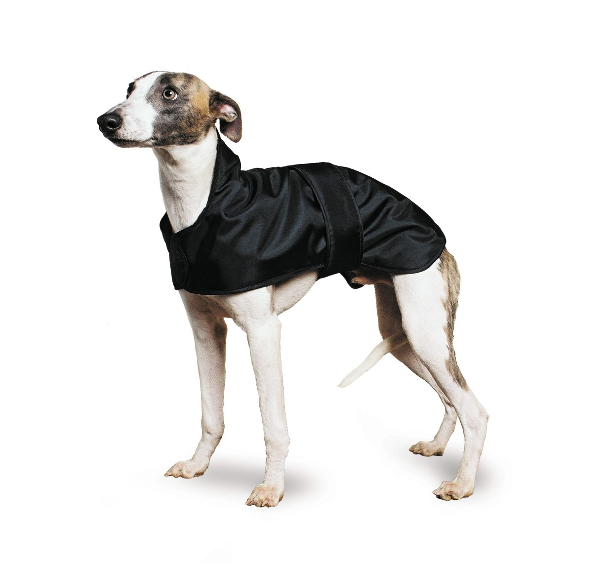 Ancol Muddy Paws - Manteau lévrier whippet 980045