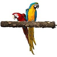tingtin Loro Pájaro Pimienta Natural Bastón de Madera