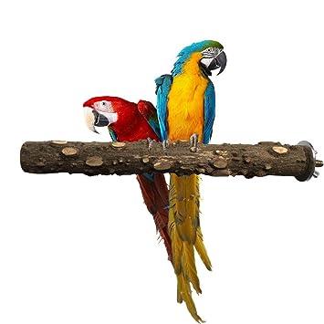 Pájaros Soporte Mascotas Jaula Para Madera Masticar De Juguete Cotorras Juguetes 9IH2DE