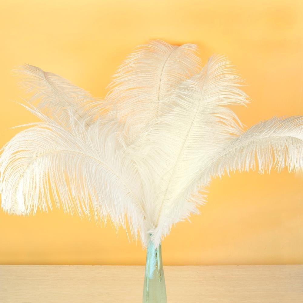 AWAYTR Natural 20-22 inch(50-55cm) Ostrich Feathers Plume for Wedding Centerpieces Home Decoration White 50 Pcs by AWAYTR (Image #2)