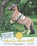 Zubehör für kleine Ponys anpassen und verschönern (equip yourself)