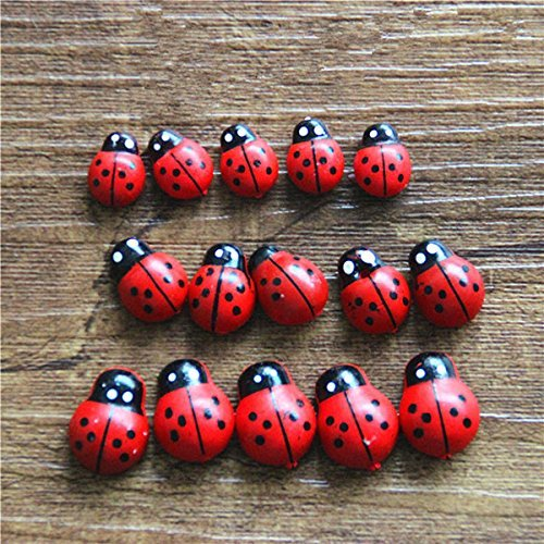 Ladybug Live (sea-junop 50 Pcs Fairy Garden Bonsai Ornaments Landscape Decor Wooden Ladybugs-Red)