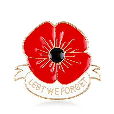 Amazon masn remembrance day memorial day gift poppy brooch masn remembrance day memorial day gift poppy brooch pins lest we forget flower badge broach mightylinksfo