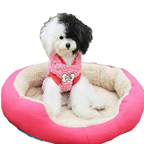 Amazon.com : Dog Beds for Large Dogs Comfort Pet Dog Crate ...