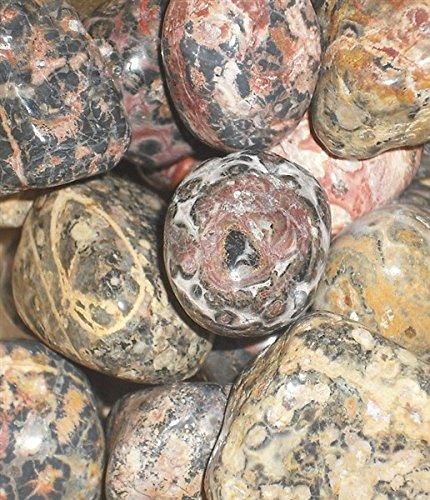 Leopardskin Jasper Tumblestones - Large