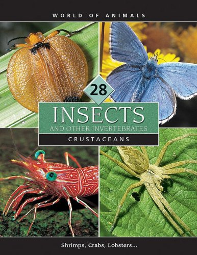Insects and Other Invertebrates (World of Animals (Danbury, Conn.), V. 21-30.) ebook