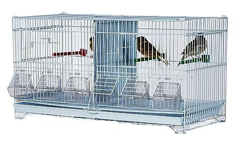 Jaulas Dobles de alerce para cría de pinzones, Canarios, periquitos, Entre Otros, por Kookaburra