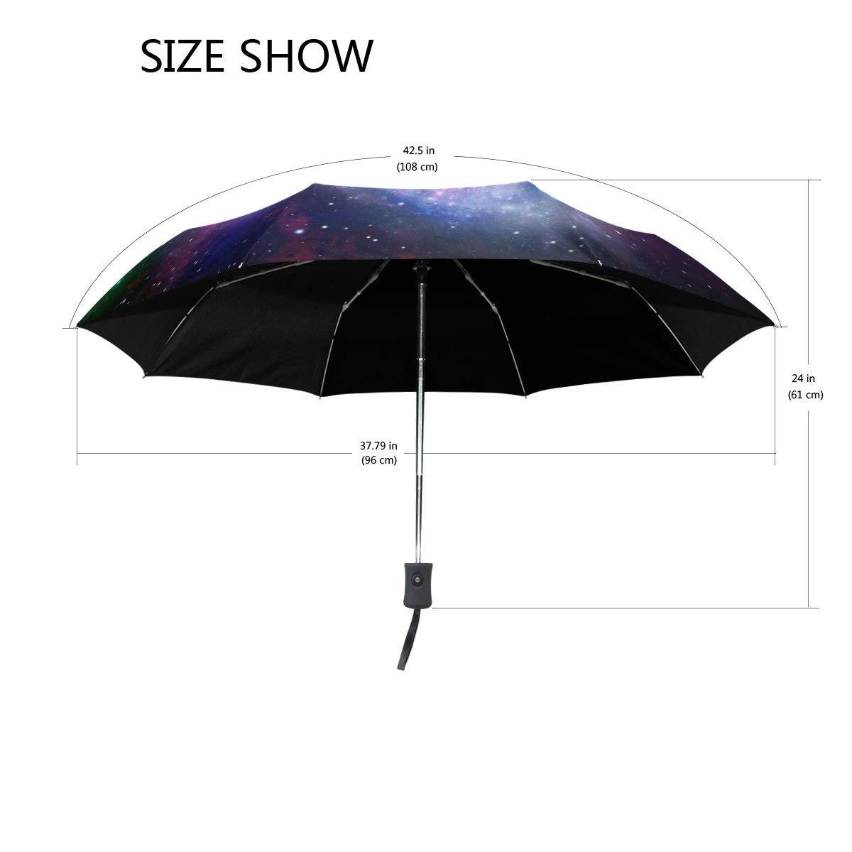 Amazon.com: Paraguas de pintura para la lluvia con mapa del ...