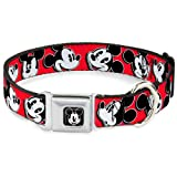 Buckle-Down Seatbelt Buckle Dog Collar - Mickey