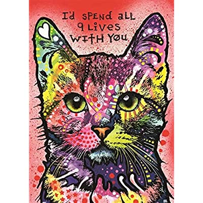 WHJKL Boy and Girl Diamond Painting Kits for Adults Fidget Spinner Kids Toys DIY 5D Christmas Gift Embroidery Pictures/Colored cat 40x50cm: Arts, Crafts & Sewing
