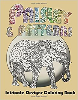 Amazon Paisley And Patterns Intricate Designs Coloring Book 9781499125061 Mix Books