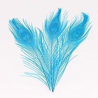 Plumas de pavo real naturales de 25 a