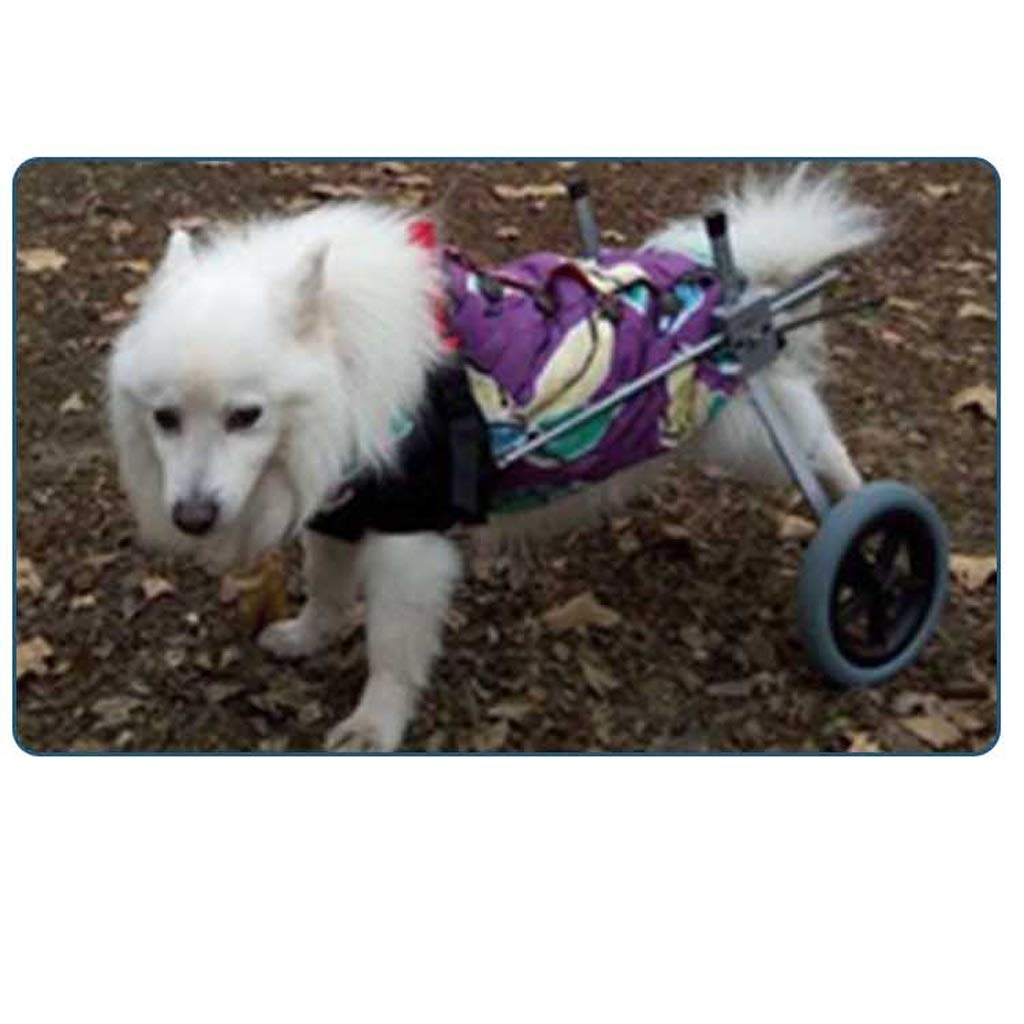 Silla de ruedas para perros, Best Friend — Silla de ruedas para ...