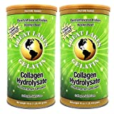 Great Lakes Gelatin, Collagen Hydrolysate, Beef, Kosher, 16 oz, 2-Pack