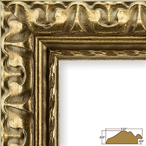 Craig Frames 21247906 18 by 24-Inch Picture Frame, Ornate Finish, 2.031-Inch Wide, Bronze and Gold, Acrylic Facing, Foamcore Backing