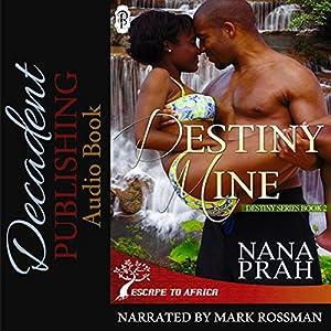 Destiny Mine Audiobook