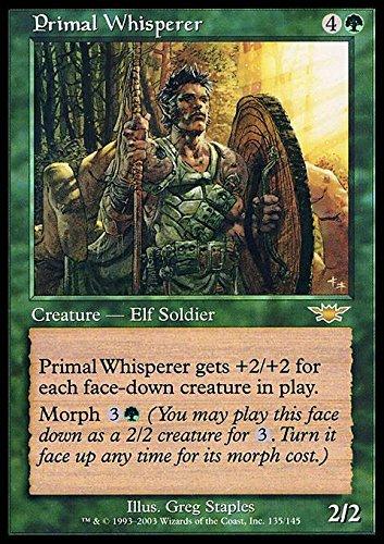 Amazon.com: Magic: The Gathering – Primal Whisperer ...