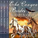 Echo Canyon Brides Box Set: Books 1-3 Audiobook by Linda Bridey Narrated by Lawrence D. Yaklin, Erick Burr