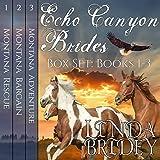 Bargain Audio Book - Echo Canyon Brides Box Set
