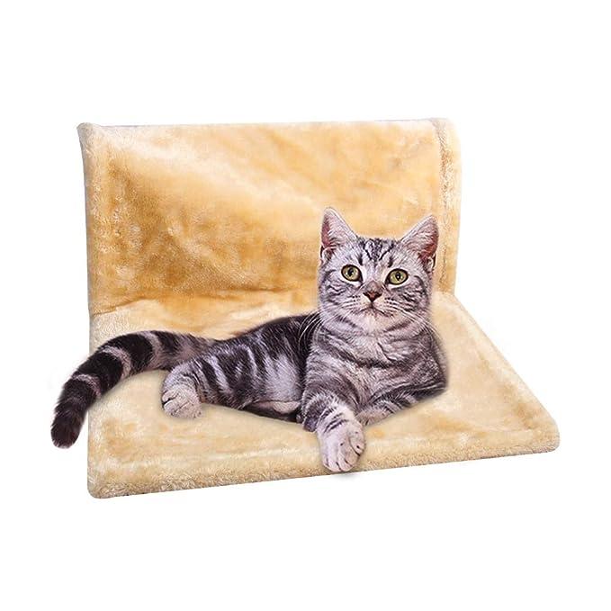 PAWISE Cama para radiador de Gato y Cachorro: Amazon.es: Productos ...
