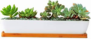 Clound city White Ceramic Long Rectangular Succulent Planter Pot,Cactus Flower Planters Pots Container for Office,Window,Kitchen and Balcony